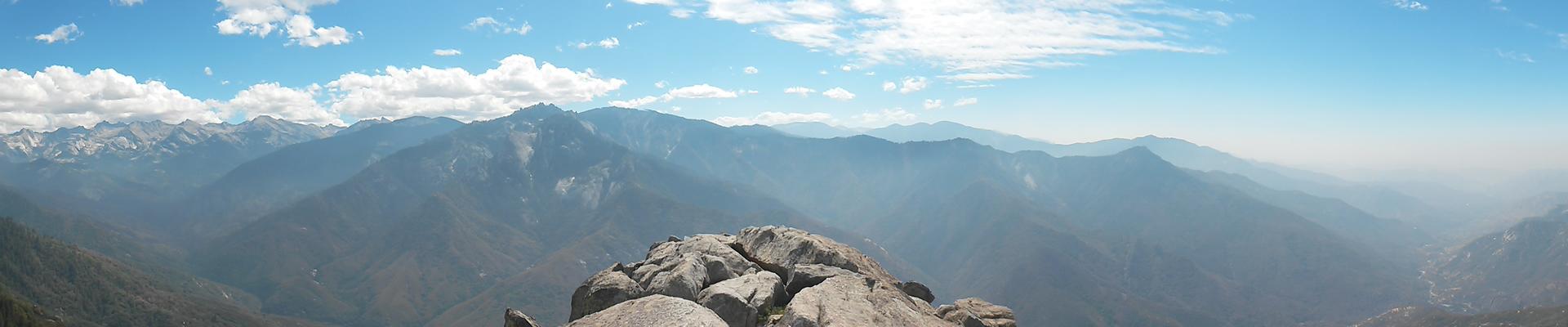 sequoia-2014